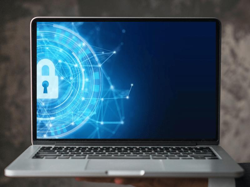Cyber Crime, Pmi e Professionisti